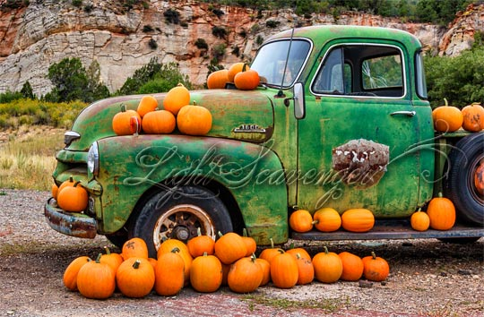 Old Truck and Pumpkins