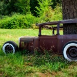 Old Car and Tree