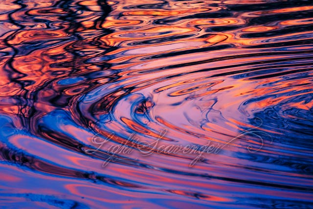 Pond Ripples at Sunset