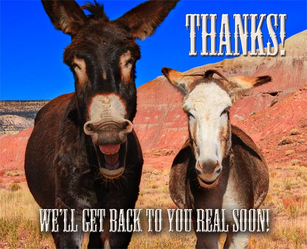 Thanks from the Burros