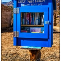 Little Free Library (White Oaks NM)