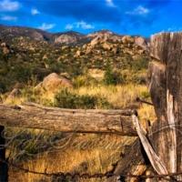 Sandias: Old Fence