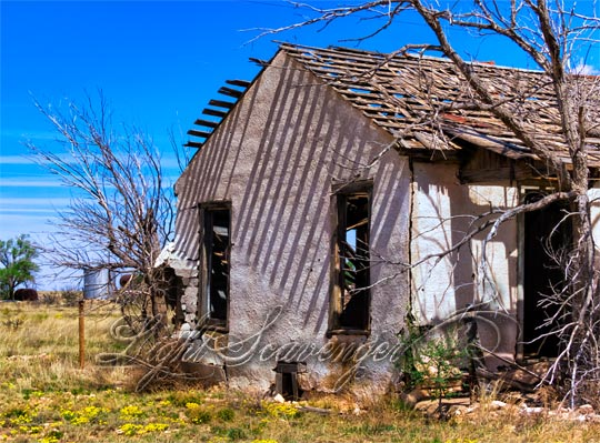 Abandoned House (Yeso)