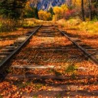 D&RGW Railroad Tracks