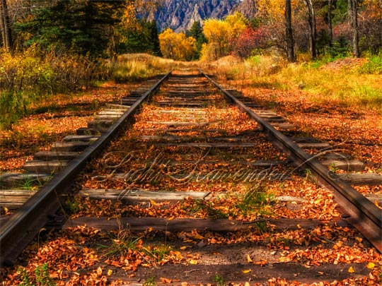 D&RGW Railroad Tracks in fall