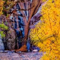 Fillmore Canyon (Fall Edition)