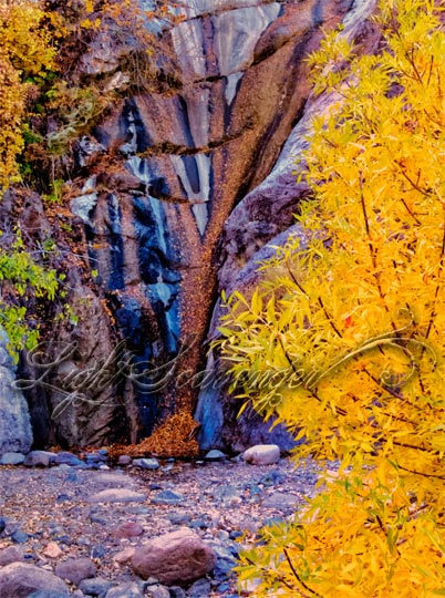 Fillmore Canyon Waterfall/Water Drip
