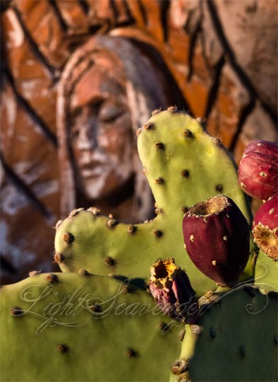 Prickly Pear and Guadalupe
