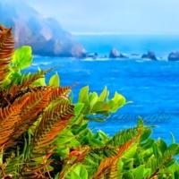 Cape Meares: Fern Spores