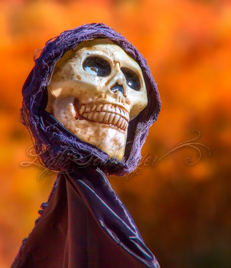 Happy Dia de los Muertos!