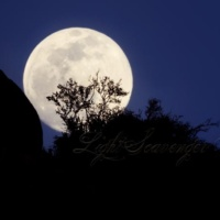 Moonrise in the Sandia Foothills